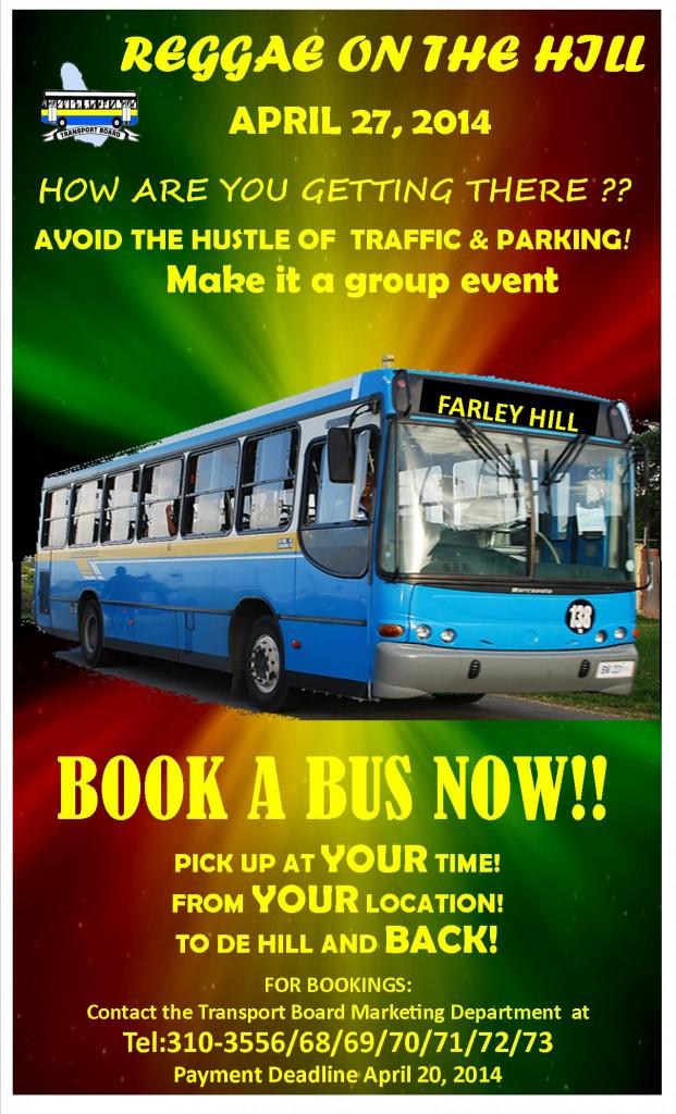 Reggae Hill - Business Flyer 2014